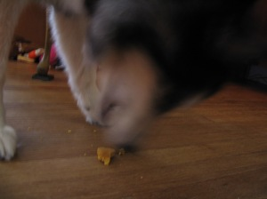 Lily didn't stay still, and had most of this treat down before I could get a photo.